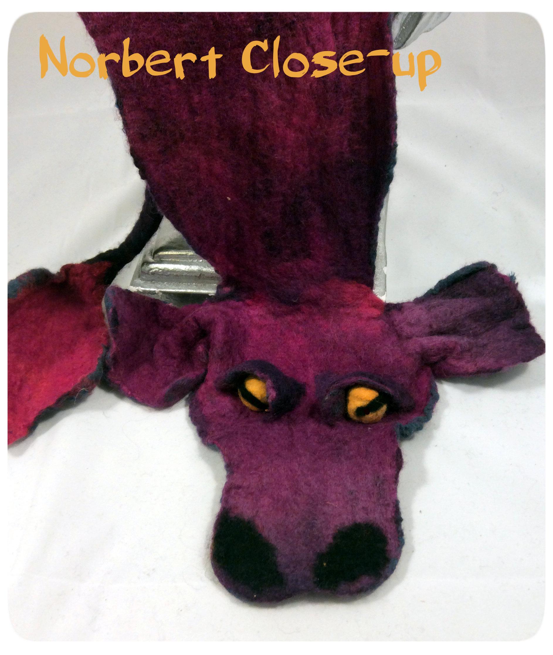 Norbert Close-up